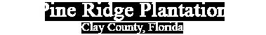 Pine Ridge Plantation Clay County, Florida